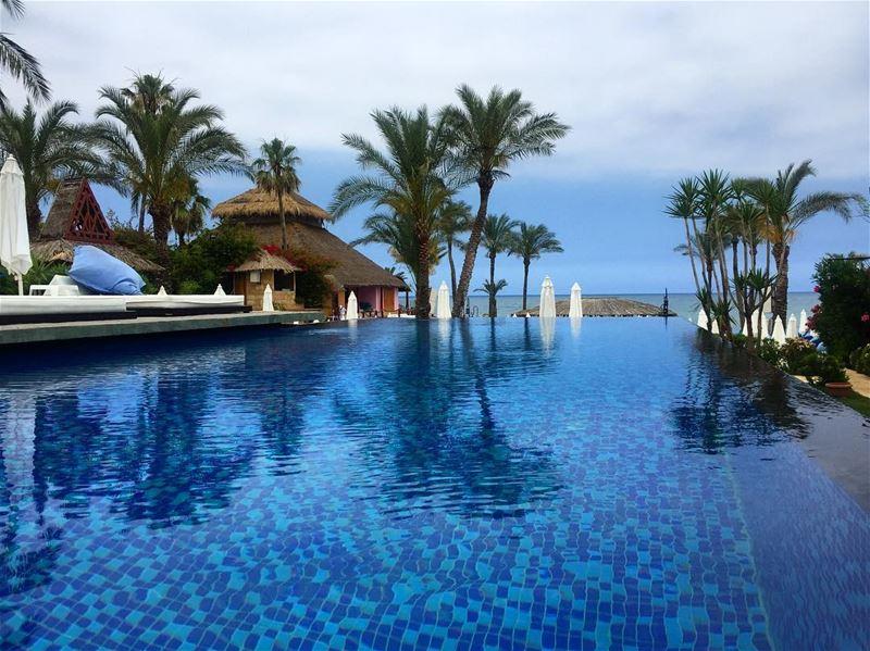 Palm trees 🌴sea breeze, salty air & sun kissed hair ☀️ a7labaladbil3alam... (Janna Sur Mer)