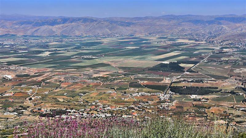 The Bekaa Valley Patchwork Quilt--------------------------------- nature... (Bekaa Valley Lebanon)