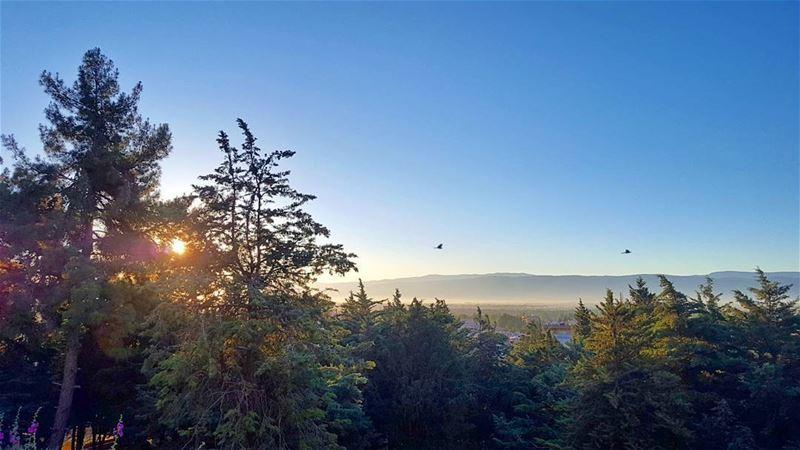 CHASING THE SUN! Morning LiveLoveBekaa... (Bekaa Valley)