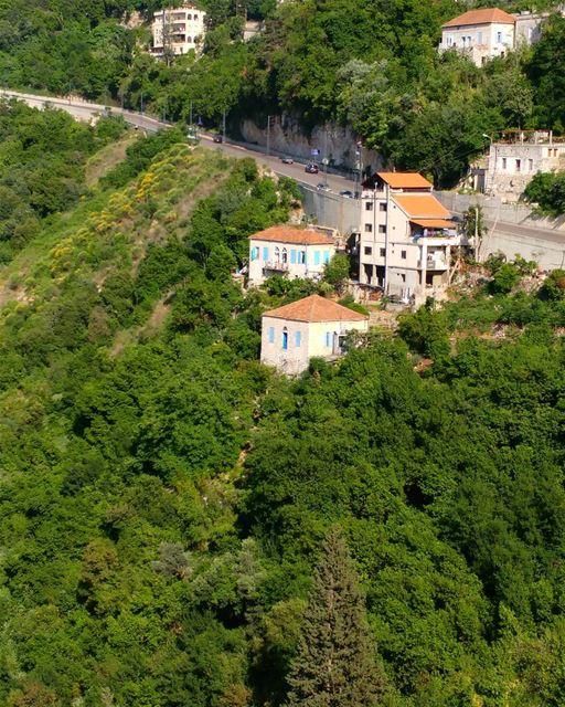 I'm dreaming of green lands 🏡 (Ghazir, Mont-Liban, Lebanon)