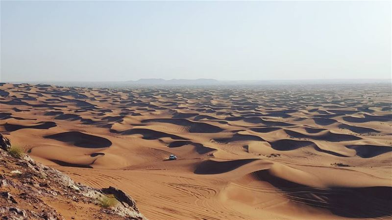 Good Afternoon 🌵______________________________________ sahara desert ... (Desert Safari Abu Dhabi)