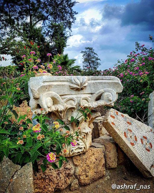 وطني يا دهب الزمان الضايعوطني من برق القصايد طالع...أنا على بابك قصيدةكت (Roman ruins in Tyre)