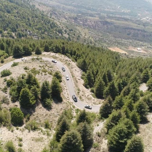 The beautiful Al Shouf Cedars lebanon shoufreserve shouf mountains ... (Al Shouf Cedar Nature Reserve)