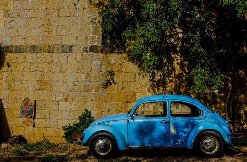 Herbie Goes to Hasbaya. Born in 1968, I belong to the Love Bug Generation,... (Hasbaya)