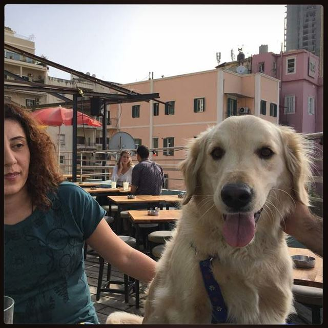 my sunshine 💙📸@efransawi Woody hehasmyheart ilovemydog purelove ... (Coop D' Etat rooftop)
