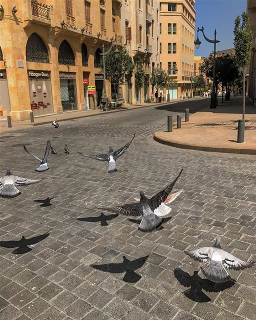 Good afternoon dear followers⭐️• beiruting beirut lebanon beirutcity ... (Beirut Central District)