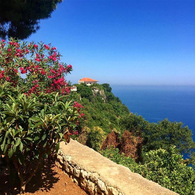 nature love lebanon lebanontimes lebanonspotlights whatsuplebanon ... (Saydet El Nourieh)