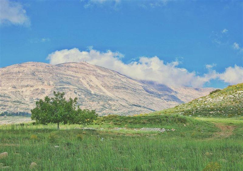 'here Adam, have some fruits...'''' photography photographyislife ... (Qanat Bakish, Mont-Liban, Lebanon)
