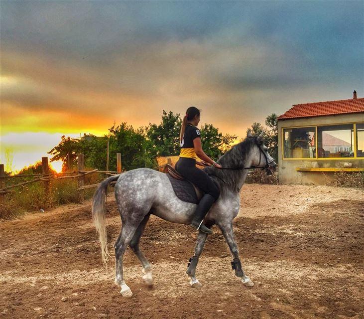 🐎🐎🐎🐎 (Tanbourit Horse Club)