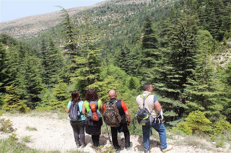 hikers adventurethatislife natureaddict ehdenspirit ehdenadventures ... (Arez Ehden)