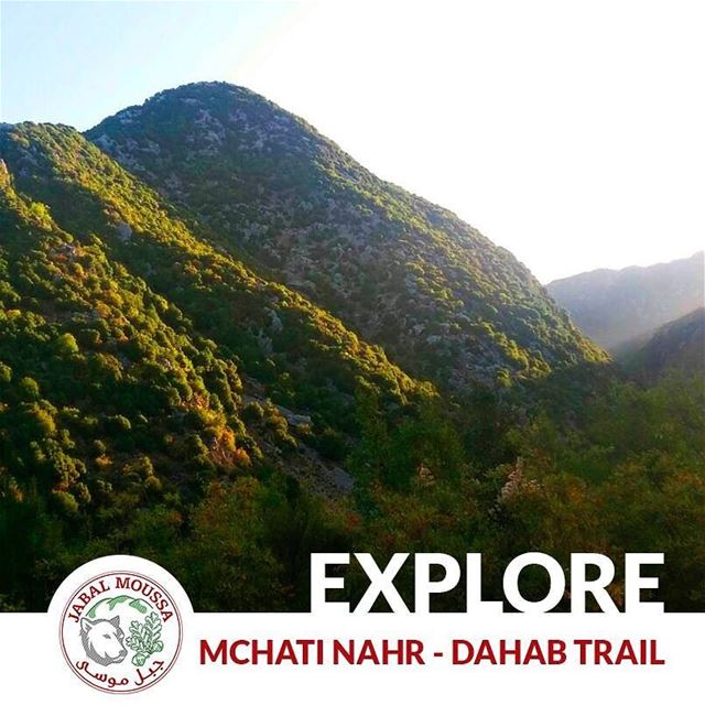 Visit JabalMoussa and discover the Platanus Trail that goes from Mchati...