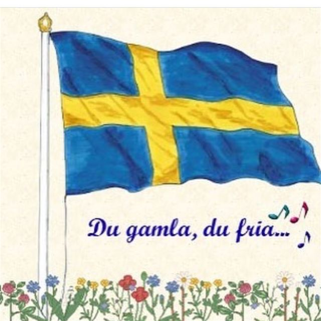sverigesnationaldag 6/6 🇸🇪💛💙 lebanese_in_sweden livelovelebanon ...