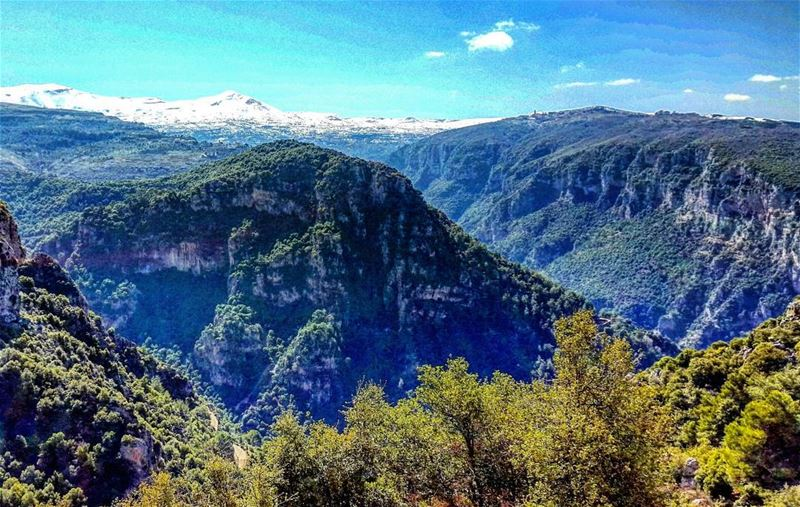 Magical mountains. Lebanon LiveloveLebanon mountains valley liban ... (Ehden, Lebanon)