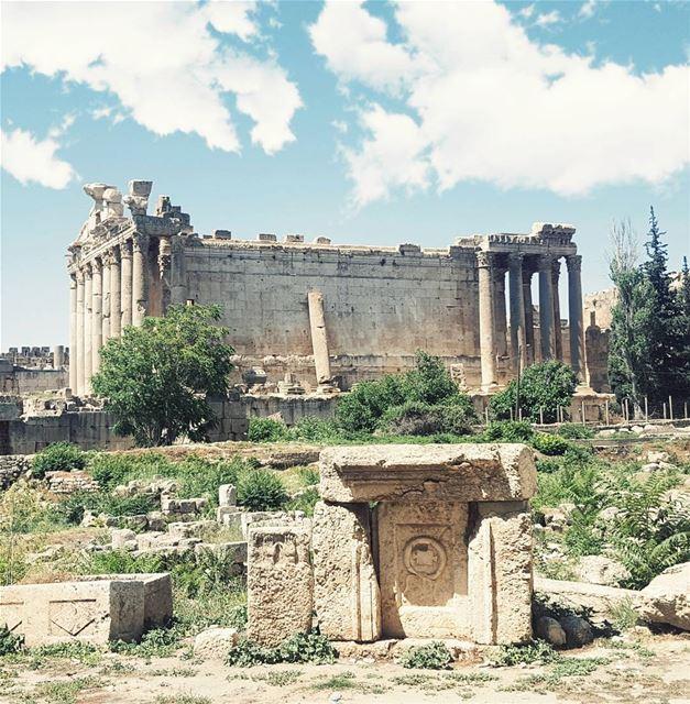 """""""Non Desistas Non Exieris"""" Ancient Roman NEVER GIVE UP , NEVER SURRENDER... (Temple of Bacchus)"""