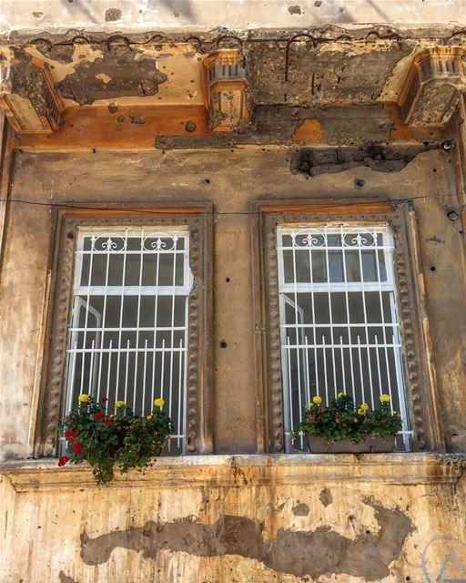 نطّرني نطّرني نطّرني عالشباك 🤔....... windows oldarchitecture ... (Beirut, Lebanon)