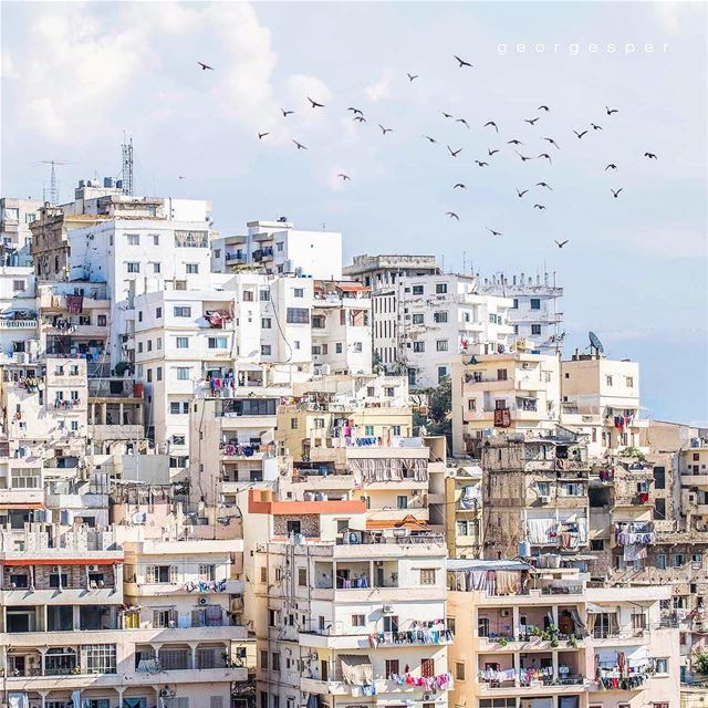 Bab Al Tebbene, Tripoli Lebanon 🇱🇧..... proudlylebanese ... (Tripoli, Lebanon)