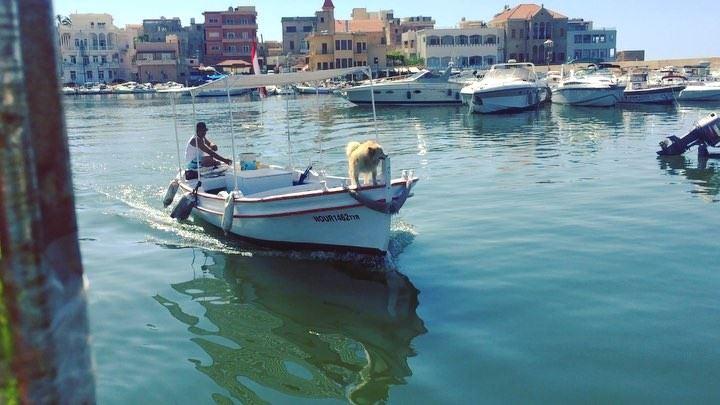 🇱🇧☀️🇱🇧🌊🇱🇧☀️🇱🇧 ... onlyfiliban lebanon tyrelebanon seaside ... (Tyre, Lebanon)