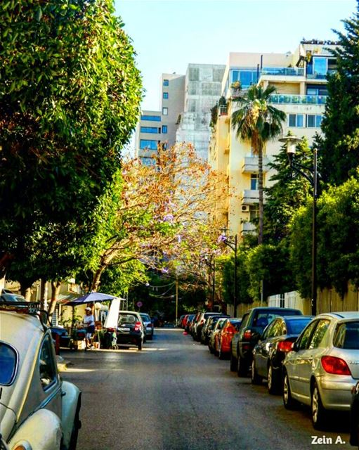 good evening sioufi area ashrafieh cars trees street ... (Parc Sioufi)
