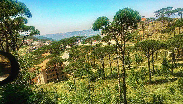 Thursday🍃🌞 beauty nature pines greenery garden gathering friends ... (Btekhnay)