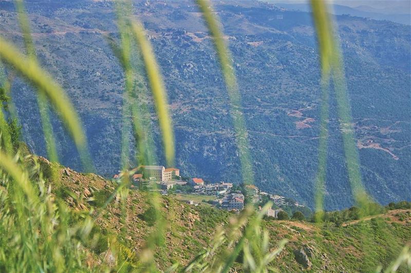'u cant depend on ur eyes if ur imagination is out of focus...''''... (Qanat Bakish, Mont-Liban, Lebanon)