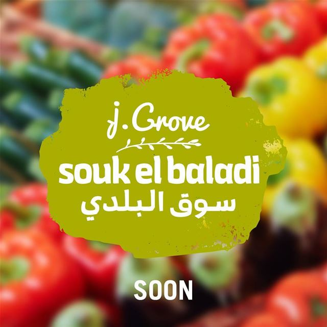 A full Southern Lebanese experience. All in one new farmers' market....