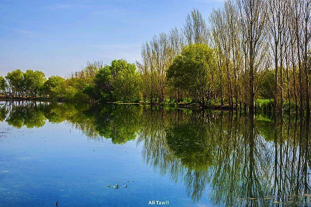 nature reflection beautiful instagram photodaily phototips ... (West Bekaa)