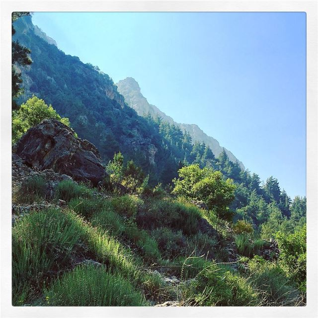 Heaven in a Valley ... livelovelebanon bcharre livelovebeirut ... (Wadi Qannubin, Liban-Nord, Lebanon)