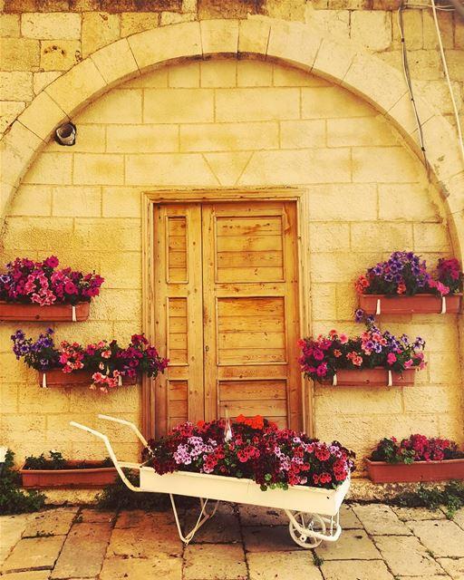 whatsuplebanon eyesoflebanon meetlebanon lebanonpictures ... (Douma, Liban-Nord, Lebanon)