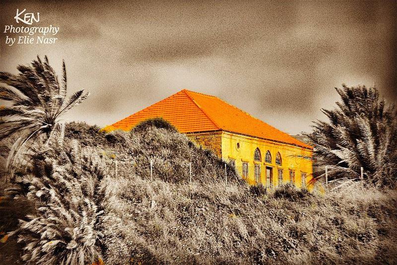 ...يا بيت جدّي بسطحك القرميدبعدك بتزكر خيمة عناقيدفيها الشمس والناس وجرا (Byblos, Lebanon)