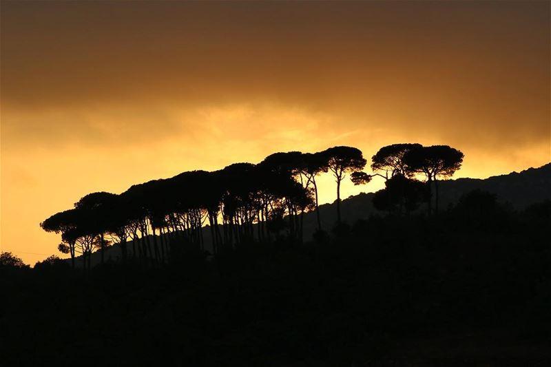 🌅.... sunset sunsetlovers sunsetpics landscape landscapephotography... (Aishiye)