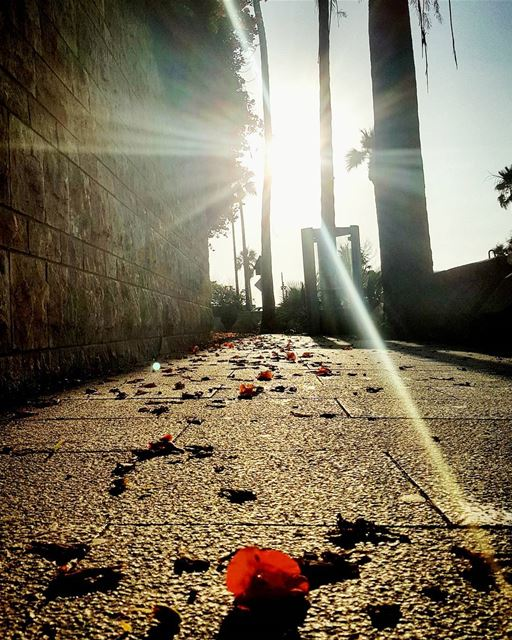 We may run through the same path..But we run differently.....Our... (Beirut, Lebanon)