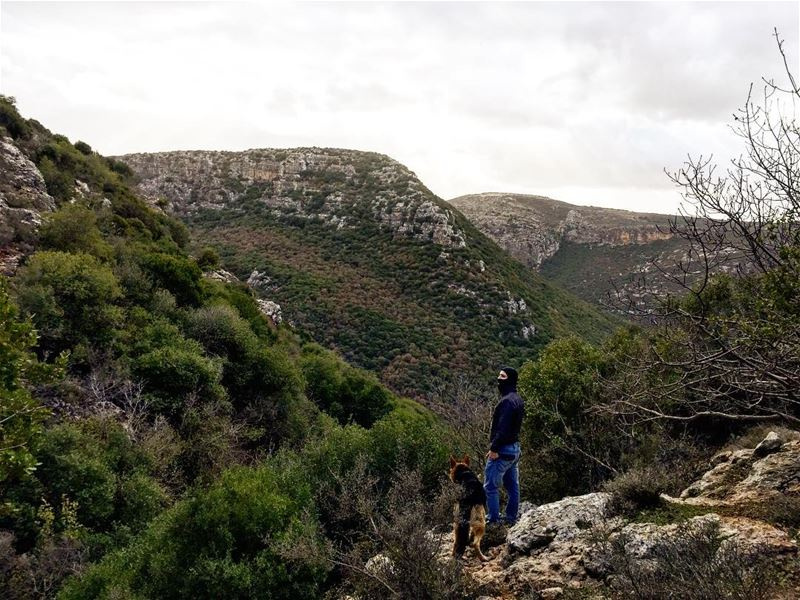 Zebquine valley is in the process of being a natural reserve. Many aspects... (Zebquine South Lebanon)