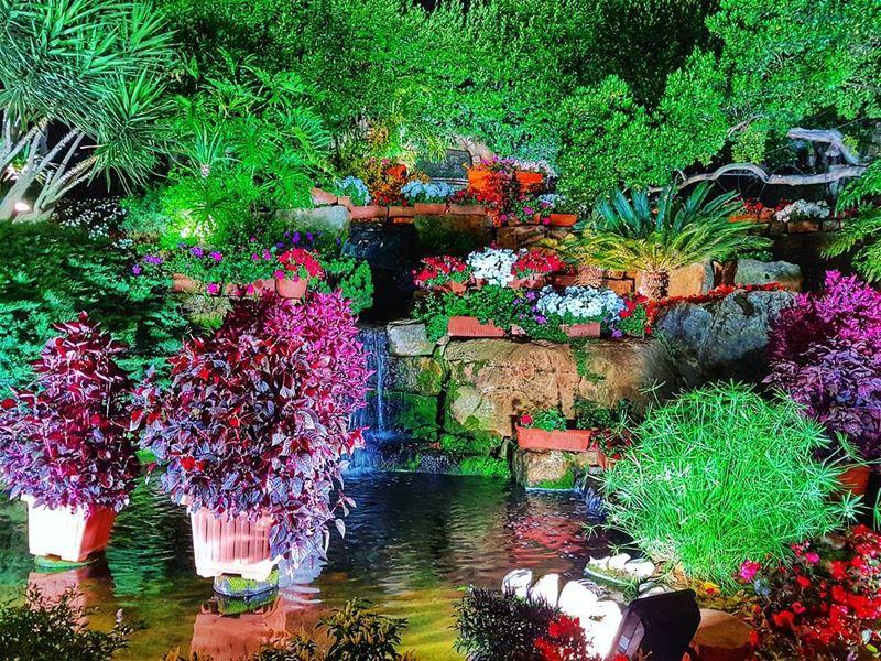 The garden at Mounir mounir mounirrestaurant garden flower ... (Mounir)