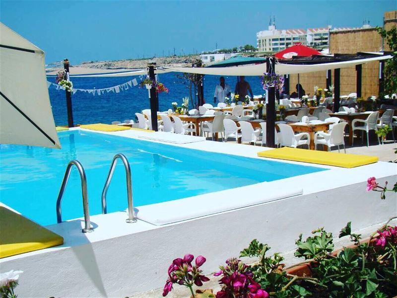 chezfouad anfeh anfehalkoura ta7telri7 pool poolside locafish ... (Chez Fouad)