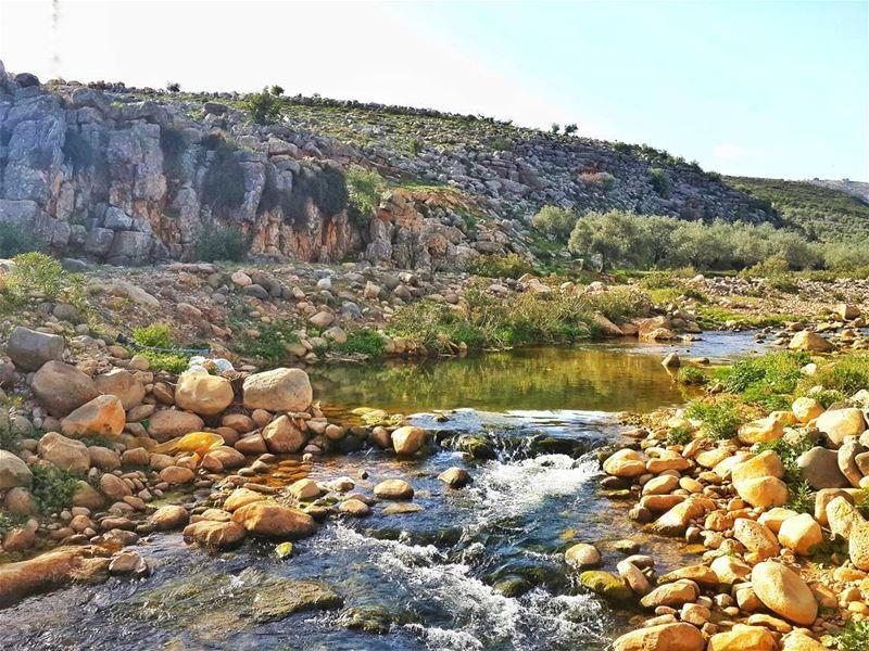 عندما تخوض حربا من اجل شيئ تأكد اولا انه يستحق ذلك 👌 📷 🍃 🌳 🌸 ... (Hasbani River- Hasbaya)