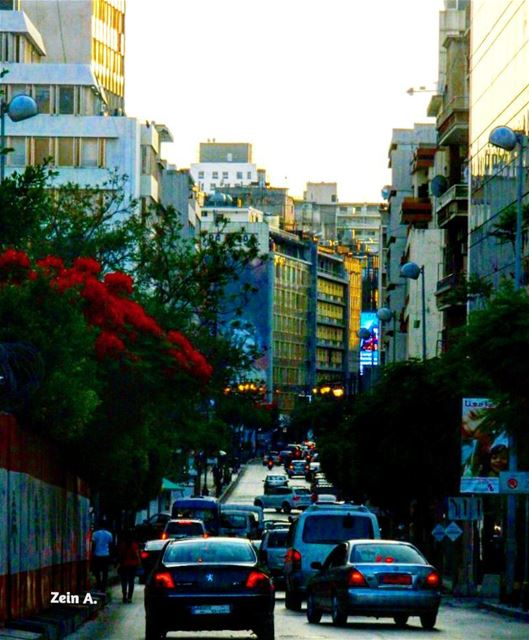 Hamra @ 7 pm good evening hamra street cars trees sunlight sunset ... (Hamra street , Beirut - شارع الحمرا ، بيروت)