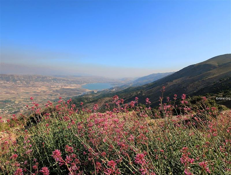 [..i just want to escape] escape bekaa valley mountain nature ... (Barouk Mountain)