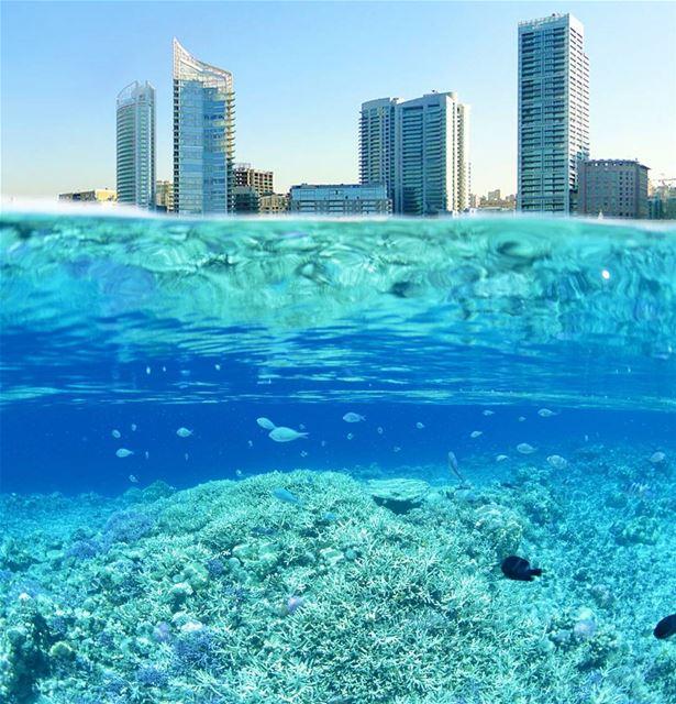 Let the Sea Set you free. 🌊🛥 livelovebeirut ... (Zaitunay Bay)