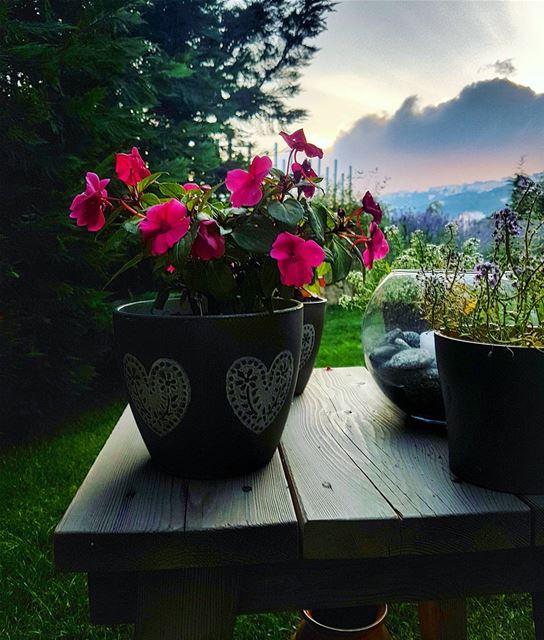 Sunset views sunset sunset_madness ig_sunset home garden mybrummana ... (Brummana)