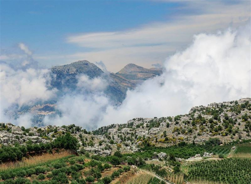 Fog in Nahr Ibrahim valley, and Laklouk peaks in the background. fog ...