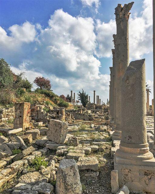 Inertia ..... nature historicalcity neverstopexploring sky_captures ... (Tyre, Lebanon)