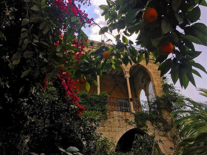 Chill zone• beiruting beirut lebanon beirutcity downtown ... (Zouk Mosbeh)