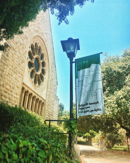 tobacco free aub 2018 lebanon🇱🇧 (American University of Beirut (AUB))