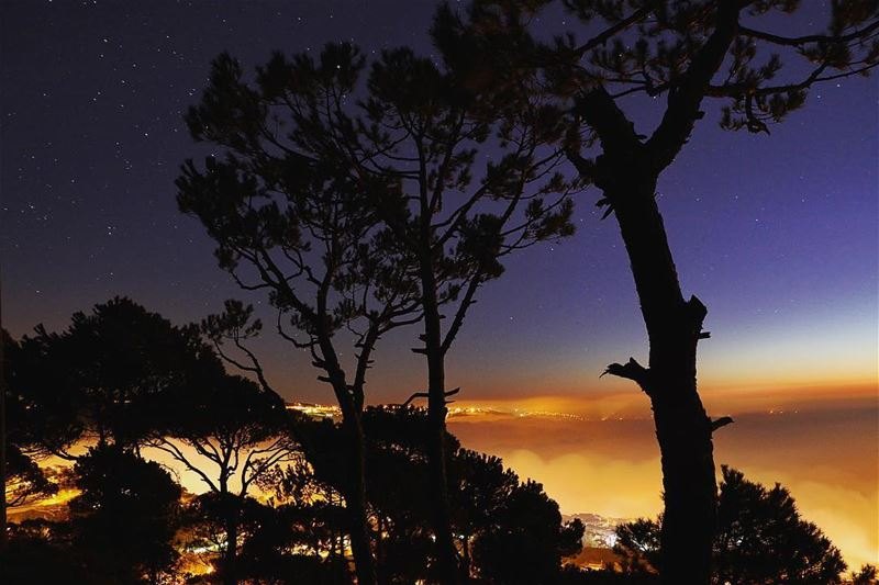 Darkest night 🏙..... night nightphotography nightshot landscape... (Hammana)