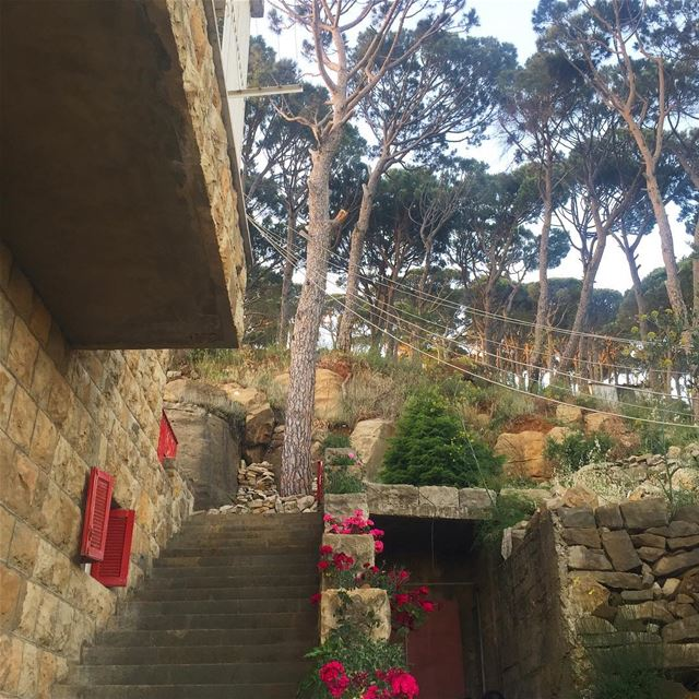 🌺🌸... lebanesehouse lebanon lebanese lebaneseheritage ...