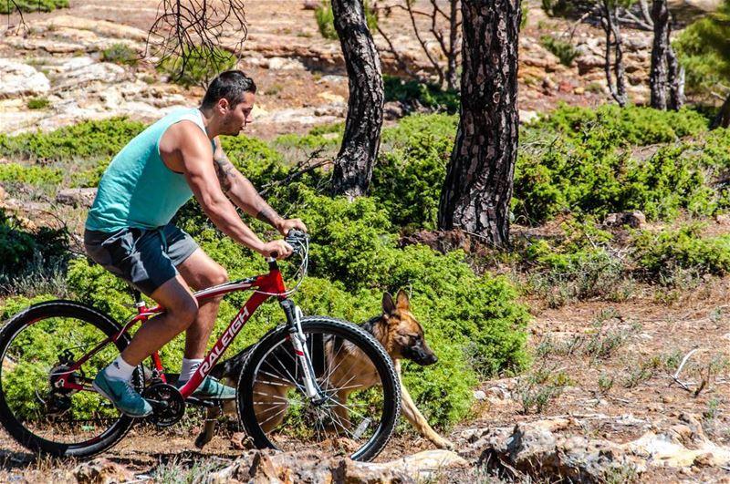 🚴🚵🐶🌳..... mountainbike bike bicycle dog dogs sport nature...