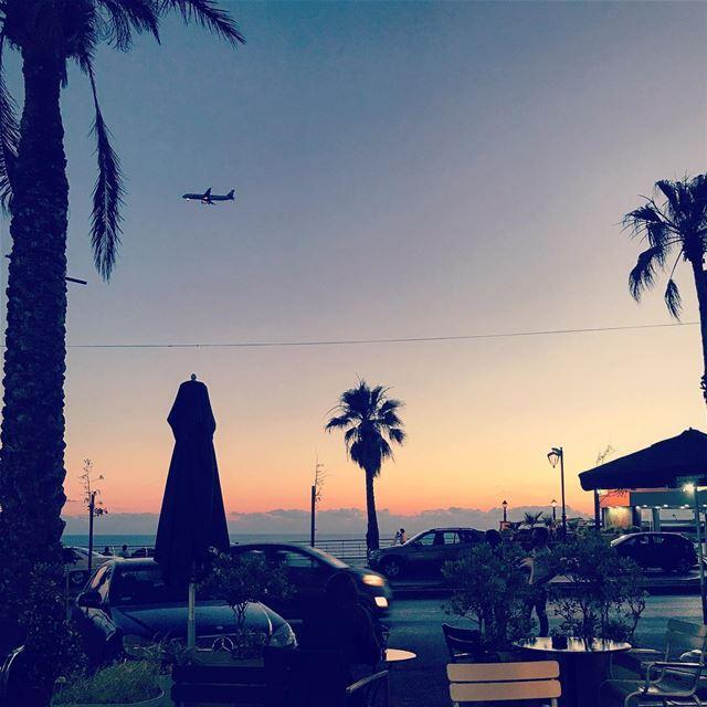 larouche beirutsunset lebanon solotravel travelphotography palmtrees... (Beirut, Lebanon)