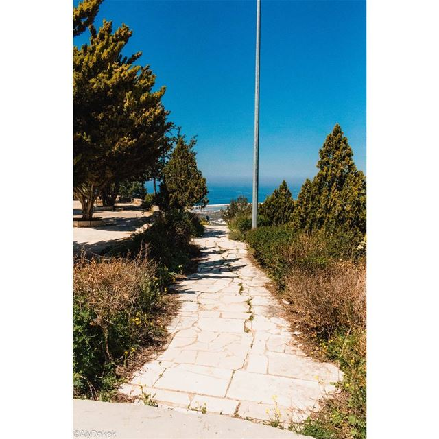 """🌞 There comes a time when a blind man takes your hand and says, """"Can't... (Maghdoûché, Liban-Sud, Lebanon)"""