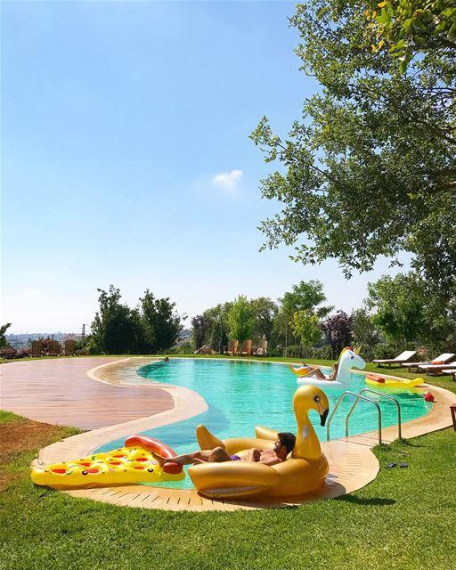 Swan pool 💧 (Domaine beit Romanos)