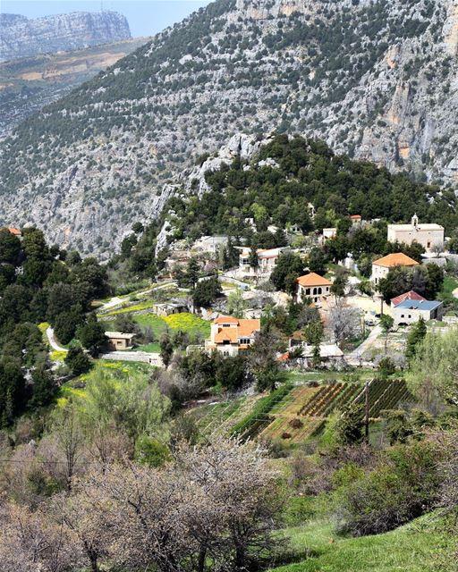 Parte da vila histórica de Tannourine vista de cima. Localizada no norte... (Tannourine)